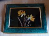 iris-en-ailes-de-papaillons-modif2